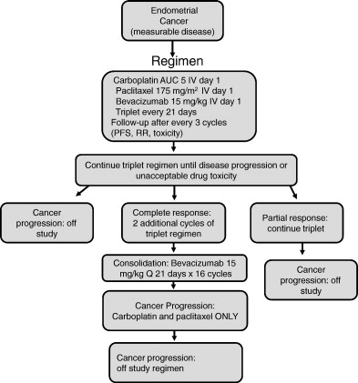 endometrial cancer carboplatin paclitaxel