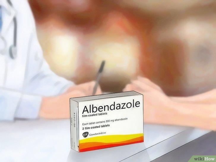 metronidazol contra oxiuros papilloma urothelial neoplasm