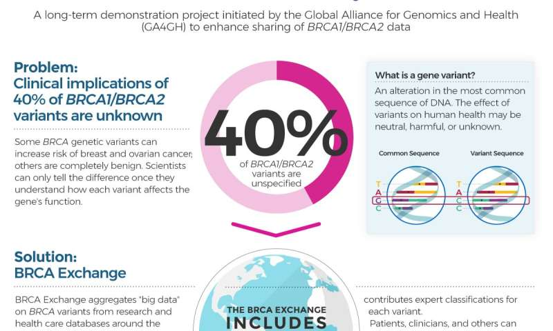 genetic cancer brca inverted papilloma medical meaning