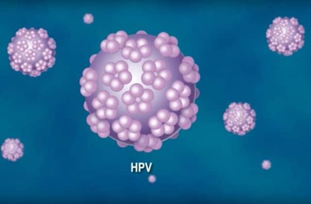 papilloma virus latente