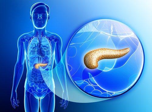 detoxifiant pancreas