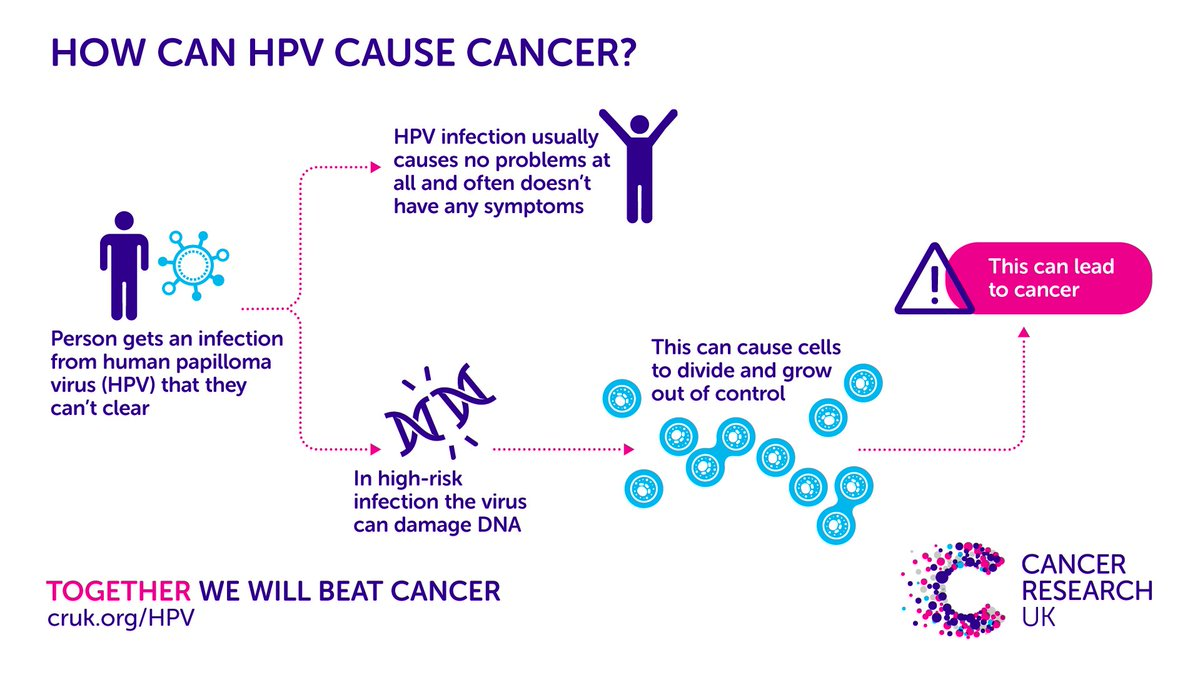 can hpv cause other cancers