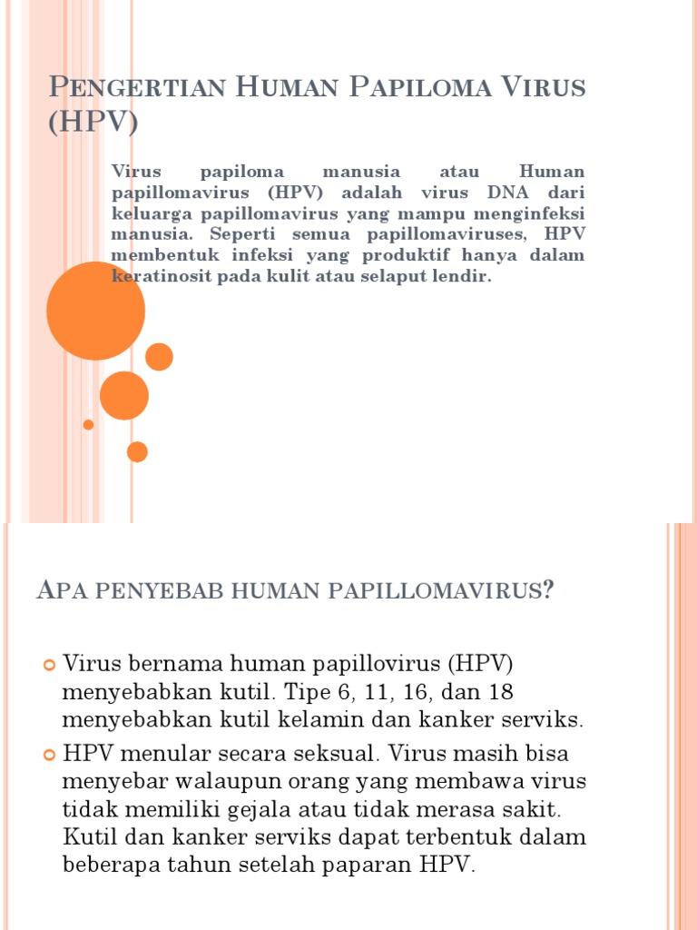 human papillomavirus (hpv) adalah