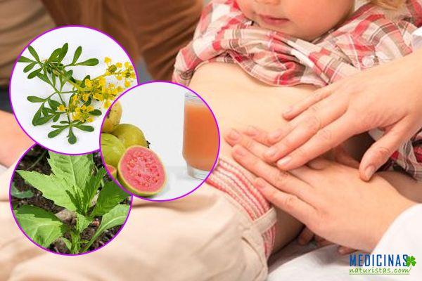 medicina para oxiuros en ninos hpv lesion protruding from the urethral meatus