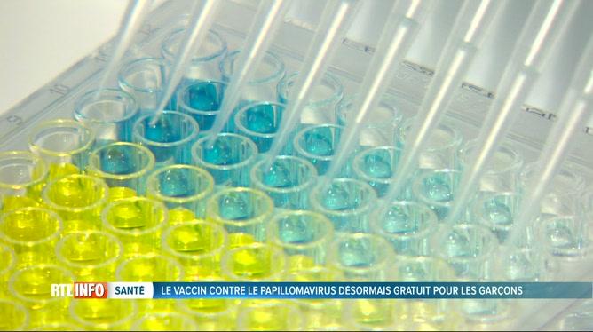 vaccination hpv garcons belgique