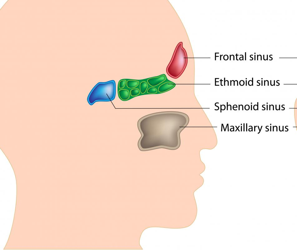 inverted papilloma nasal cause ovarian cancer under 50