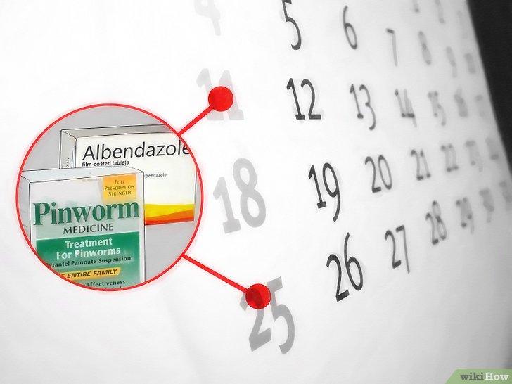 metronidazol contra oxiuros