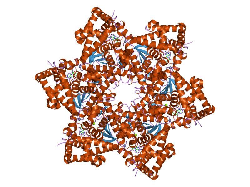 significado de virus del papiloma humano cancer col uterin vaccin