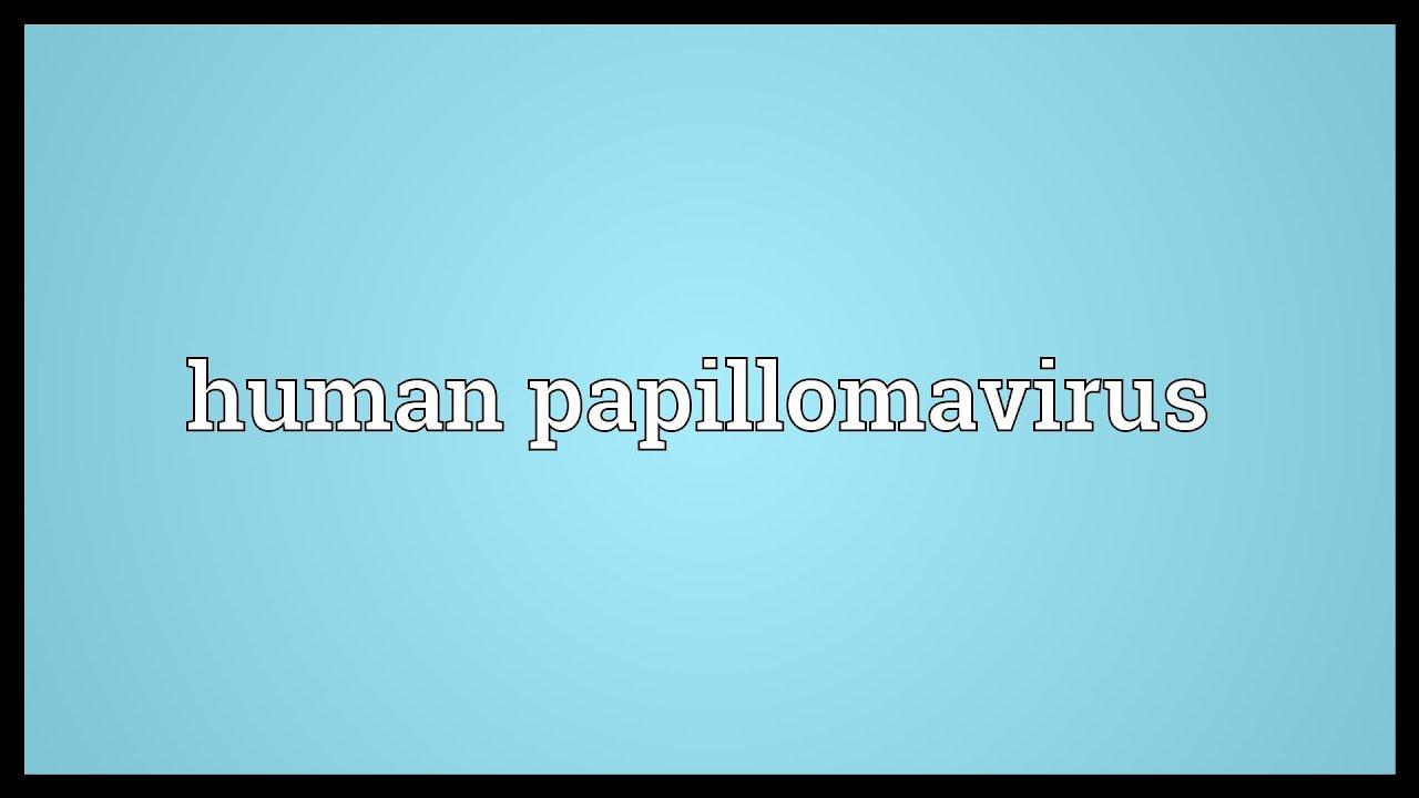 human papillomavirus infection pronunciation laryngeal papillomatosis histopathology