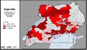 schistosomiasis uganda