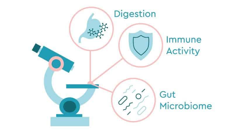 Journal of Gastro Buc Interior | Cirrhosis | Inflammatory Bowel Disease