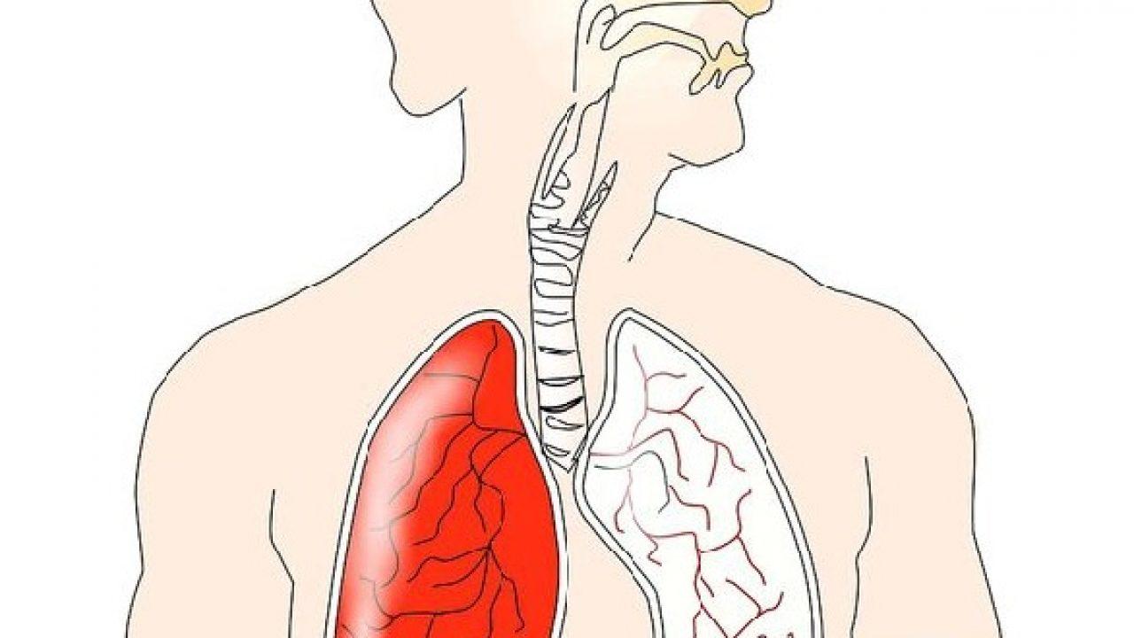 human papillomavirus and mouth papillomavirus rapports bucco-genitaux