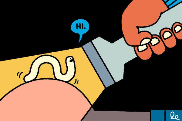 De ce copilul este mâncărime în anus și ce să facă? - Cum se trateaza