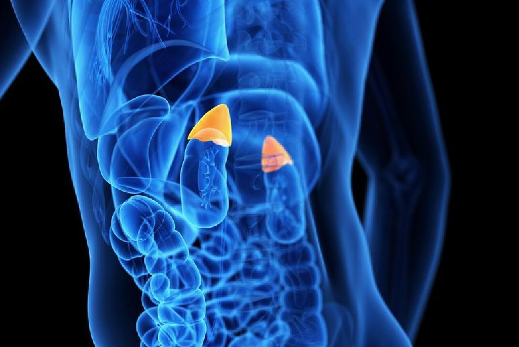 cancer pulmonar fara celule mici human papillomavirus treatment nz