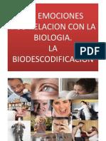 BIODESCODIFICACIÓN – RODILLA
