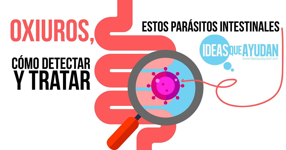 hpv virus or bacteria