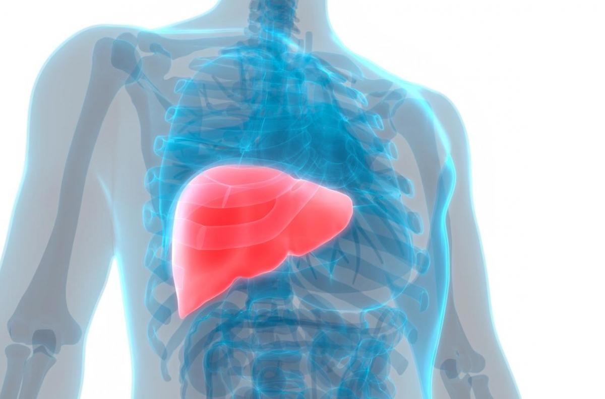 cancer pancreas metastase foie