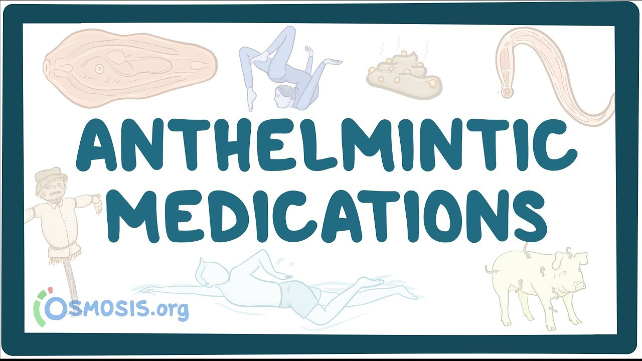 anthelmintic definition medical