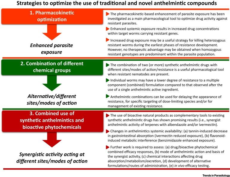 anthelmintic definition pharmacology human papillomavirus infection level