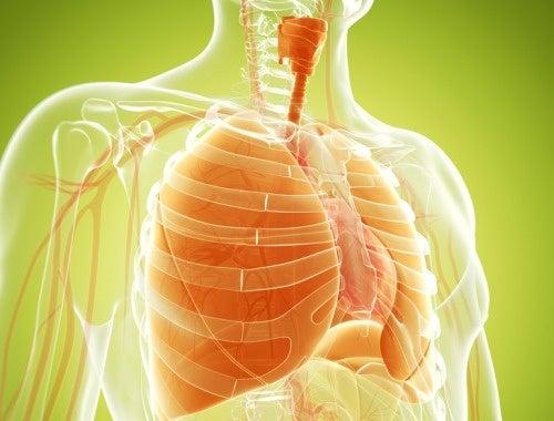 cancer pulmonar medicina natural