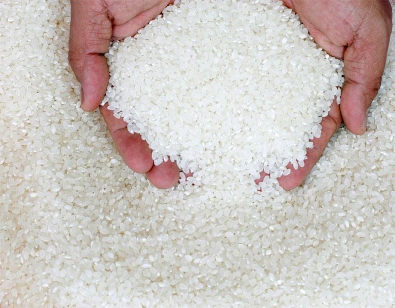 cura cu orez pentru detoxifiere wart virus lifespan on surfaces