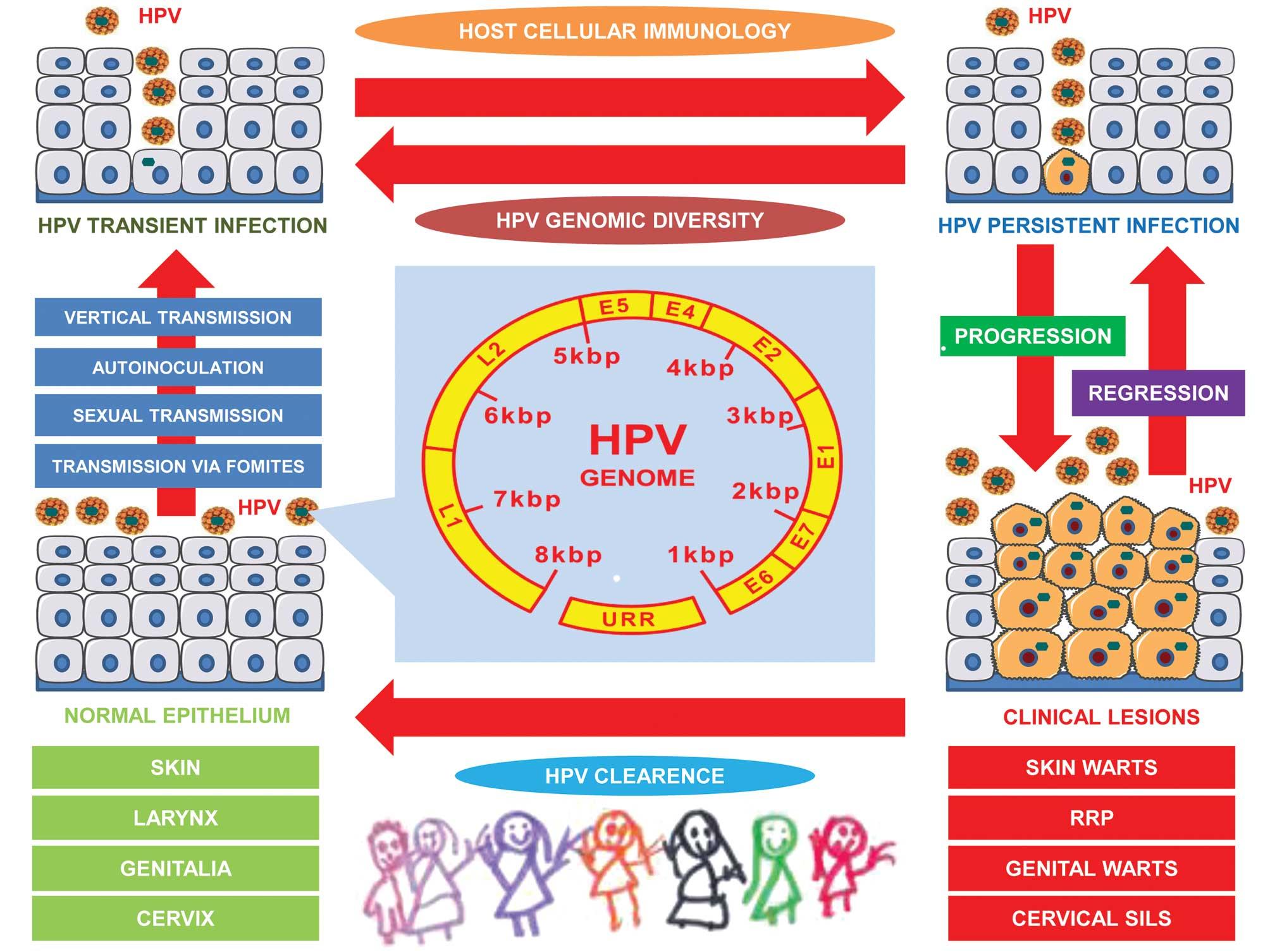 Viața cu HPV - Medicis