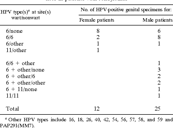 genital warts hpv type 6 and 11 hpv virus gebarmutter