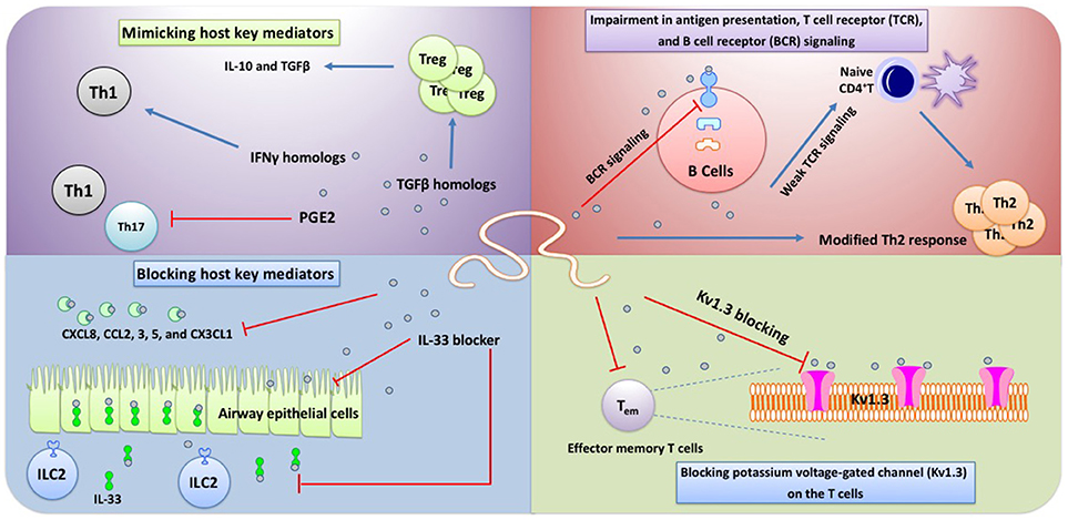 toxine botulique age gastric cancer book