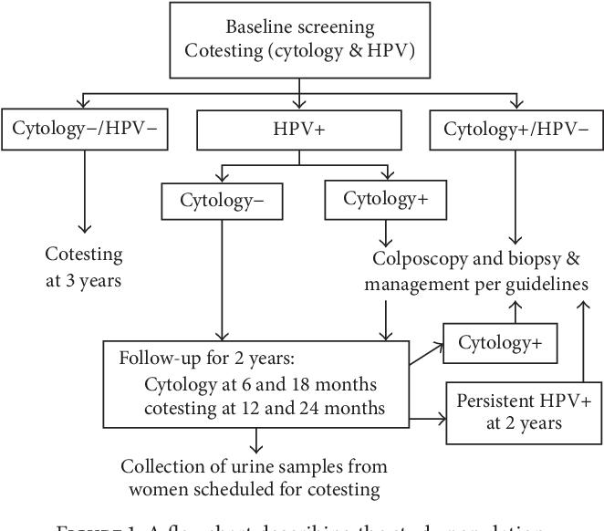high risk human papillomavirus (hpv) dna detection