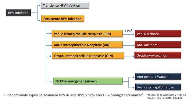 hpv impfung fur manner kosten