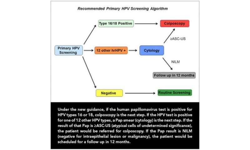 human papillomavirus testing algorithm