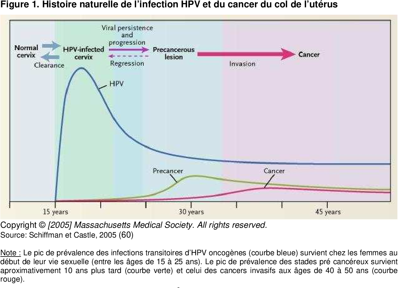 hpv warts transmission rate