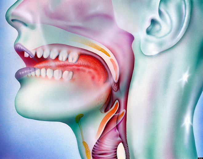 papilloma virus gola tampone