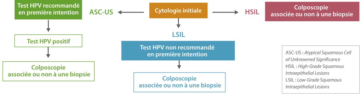 papillomavirus humain recherches associees ascaris lumbricoides y oxiuros vermicularis