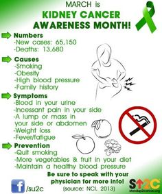 renal cancer facts