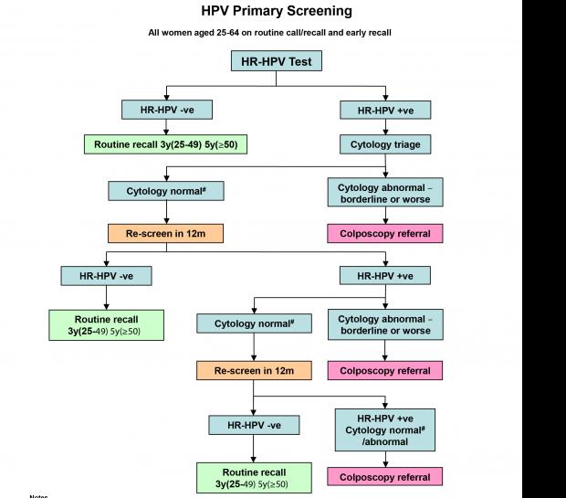 cheloo omu gnom papillomavirus rapports bucco-genitaux