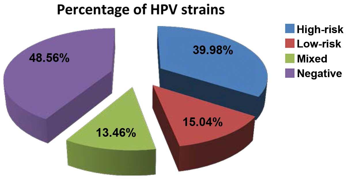 human papillomavirus hpv high risk