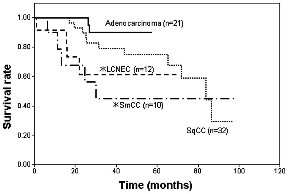 neuroendocrine cancer stage 4 survival rate vestibular papillomatosis irritation