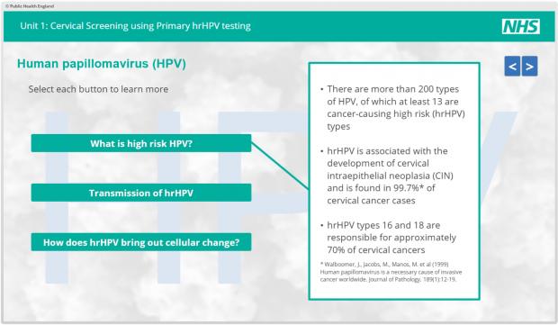 cancerul de vezica urinara la barbati papillomavirus homme examen