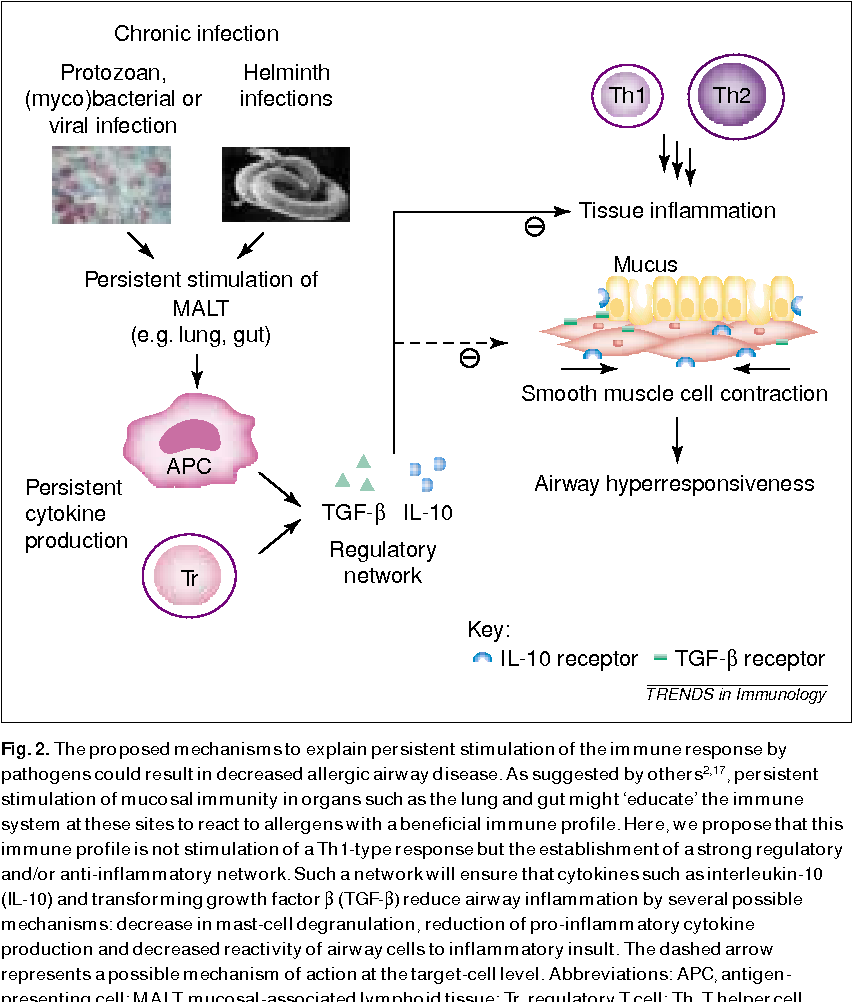 paraziti v rybach hpv infection throat cancer