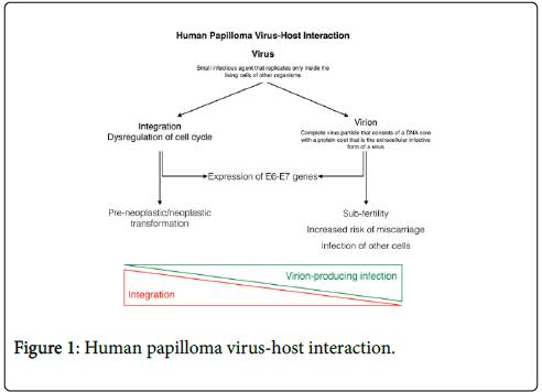 mass screening for human papillomavirus type 16 infection in infertile couples