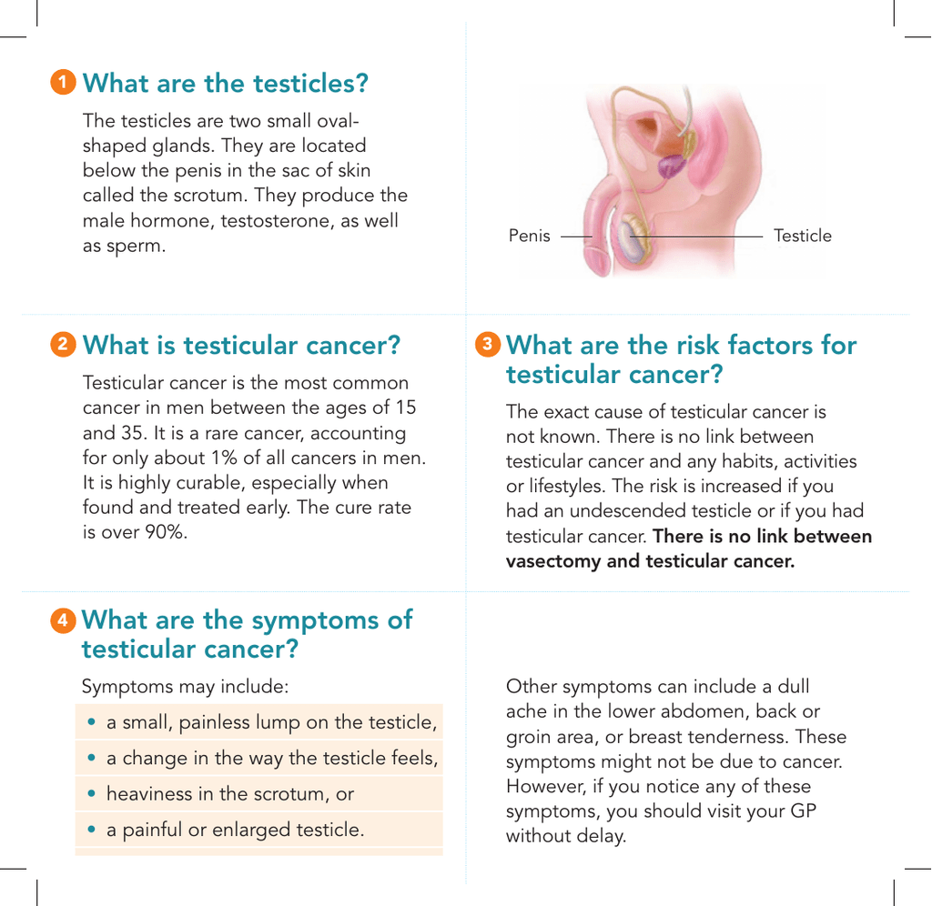 cancer de osos sintomi papilloma virus in gola