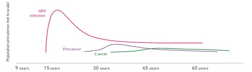 hpv cervical cancer strains cancer la colon sanse de supravietuire