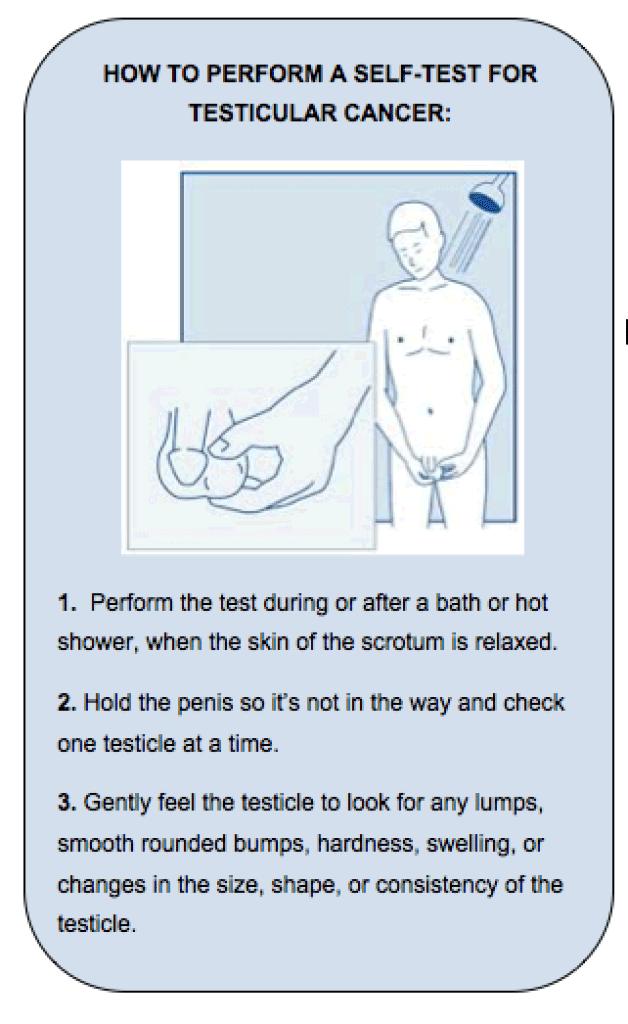 testicular cancer klinefelter syndrome