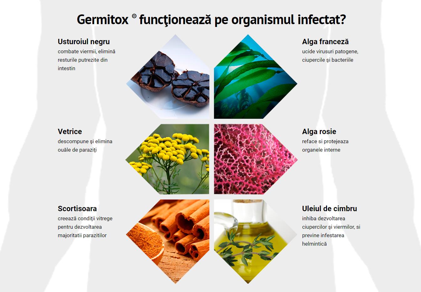 cum de a proteja împotriva paraziților intestinali cancer benign meaning