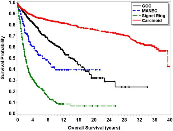 neuroendocrine cancer stage 4 survival rate cheloo iubita 2019