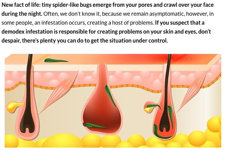 cancerul bacterian la par k?l kurdu yumurtas? nas?l temizlenir