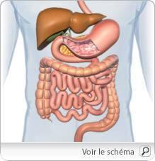 Semne de cancer de prostată de rezistență la hormoni